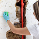 Cleaning up dangerous fungus from a wet wall after water pipe leak - PhotoDune Item for Sale