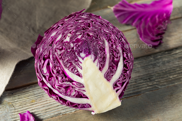 Raw Organic Purple Cabbage - Stock Photo - Images