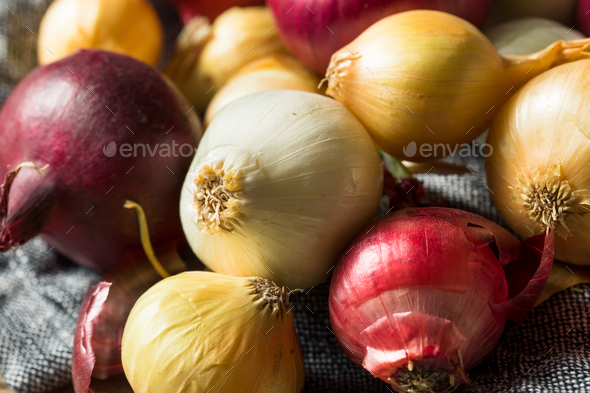 Raw Organic Assorted Pearl Onions - Stock Photo - Images