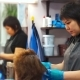 Hairdresser at Work in the Salon - VideoHive Item for Sale