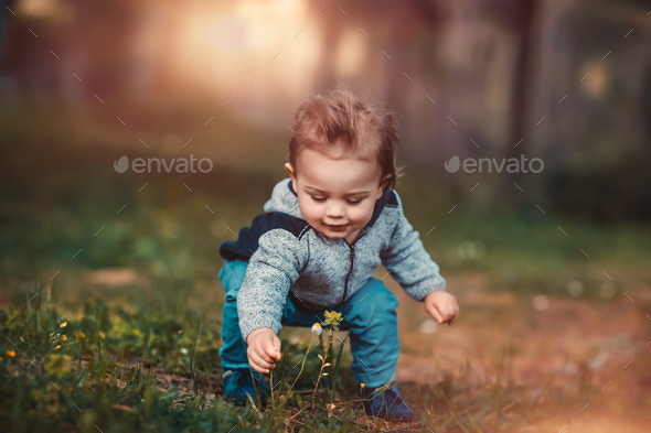 Baby boy collect flowers - Stock Photo - Images