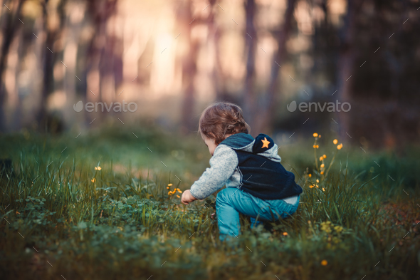 Baby boy plucking flowers - Stock Photo - Images