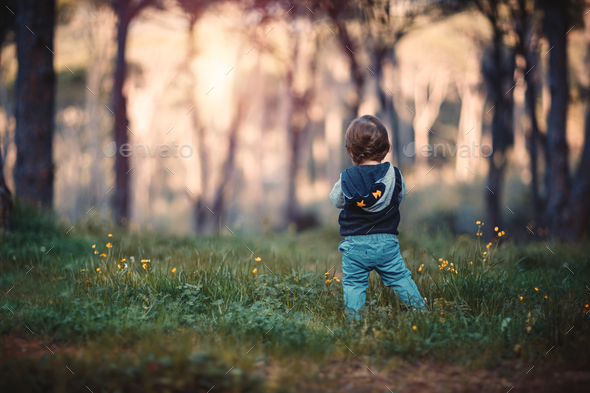 Little boy in the forest - Stock Photo - Images