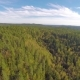 Flying High above Large Spruce Tree Forest - VideoHive Item for Sale