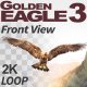 Golden Eagle-3 Front View - VideoHive Item for Sale