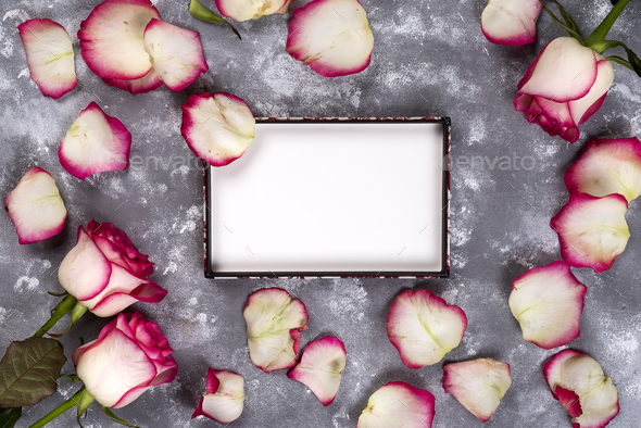 Beautiful rose flowers on gray stone table. Floral border. - Stock Photo - Images