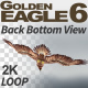 Golden Eagle-6 Back Bottom View - VideoHive Item for Sale