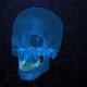 Digital Cyber Skull Head  - VideoHive Item for Sale