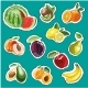 Embroidery Fruits Collection. Vector Fashion