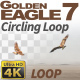 Golden Eagle-7 Circling Loop - VideoHive Item for Sale