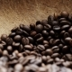 Shot of Coffee Beans - VideoHive Item for Sale