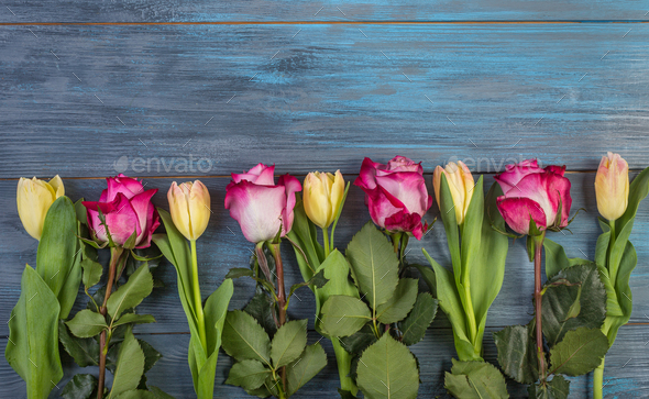 Row flowers on a blue background - Stock Photo - Images