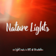 Nature Lights (4K Set 2) - VideoHive Item for Sale