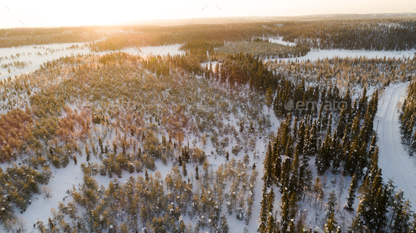 Aerial drone view of idyllic winter landscape. Green  snow covered forest from the top - Stock Photo - Images
