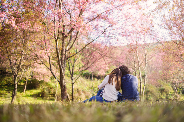 Young couple walking in the park and looking cherry blossoms tree - Stock Photo - Images