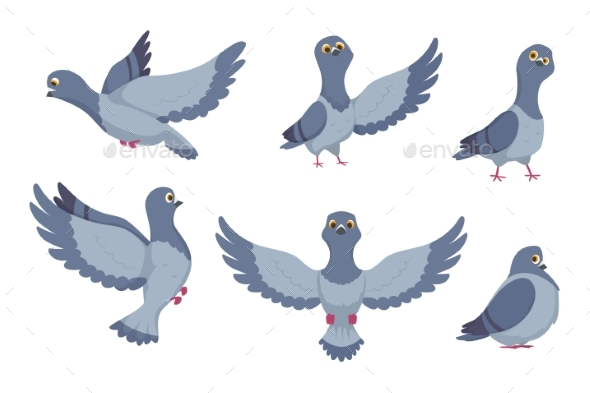 Vector Collection of Cartoon Pigeons - Animals Characters