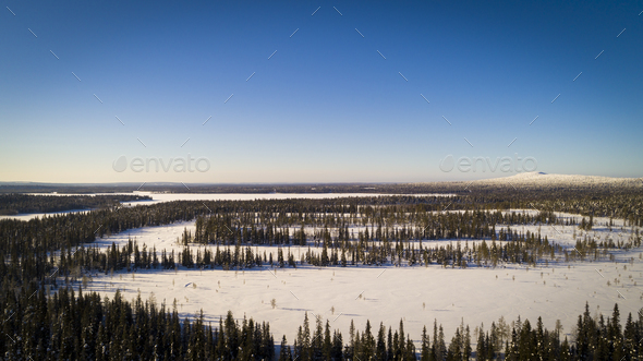 Aerial/Drone View of Snow Covered Tree Forest - Stock Photo - Images