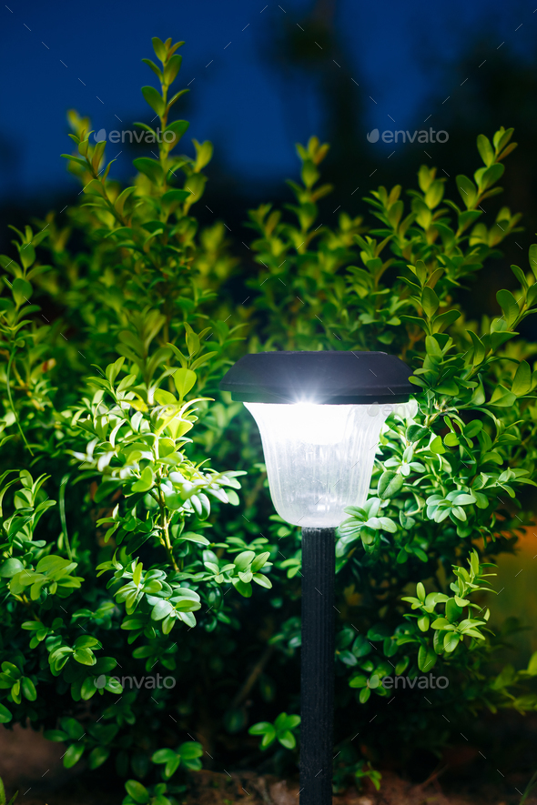 Small Solar Garden Light, Lantern In Flower Bed. Garden Design. - Stock Photo - Images