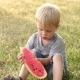 of a Small Boy with Watermelon in the Park - VideoHive Item for Sale