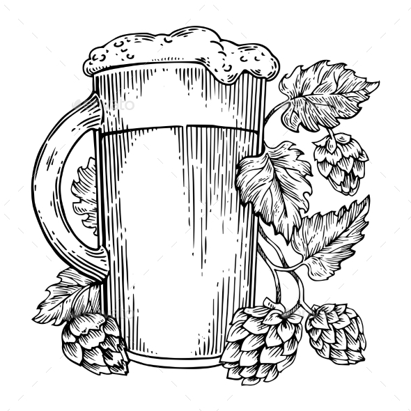 Beer and Hops Plant Engraving Vector - Food Objects
