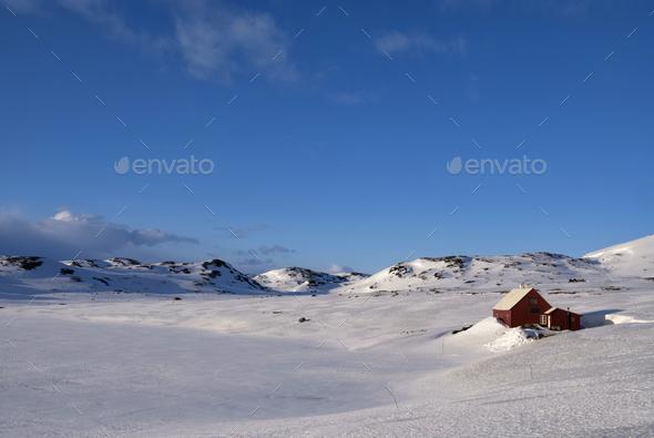 Norwegian mountain plateau Hardangervidda - Stock Photo - Images