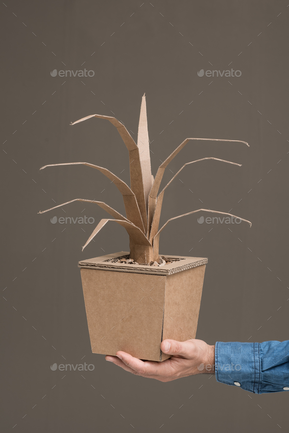 Decorative plant made of cardboard - Stock Photo - Images