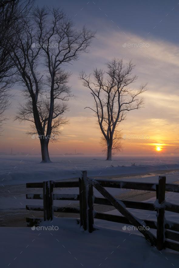 Snowy landscape in the Alblasserwaard - Stock Photo - Images