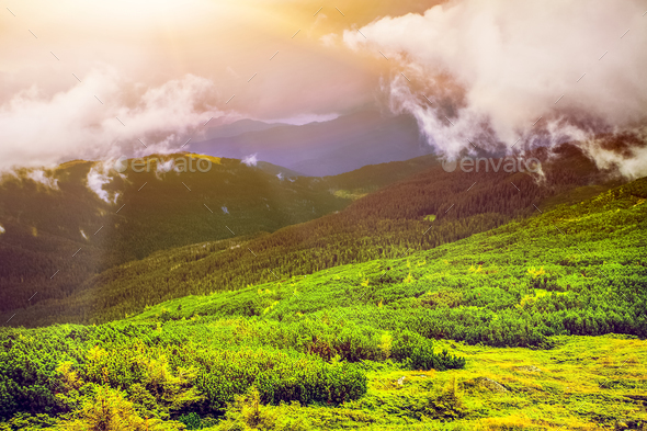Fantastic sunset in the mountains of Ukraine - Stock Photo - Images