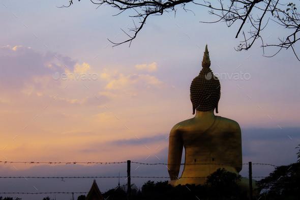 Buddha and tree with sunrise - Stock Photo - Images