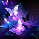Background with Night Butterflies - GraphicRiver Item for Sale