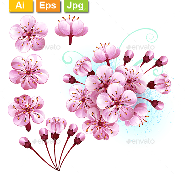 Set of Sakura Flowers - Flowers & Plants Nature