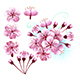 Set of Sakura Flowers - GraphicRiver Item for Sale