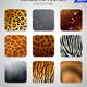 Wild Animals Fur Texture Set