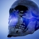 Metall Skull Rotate