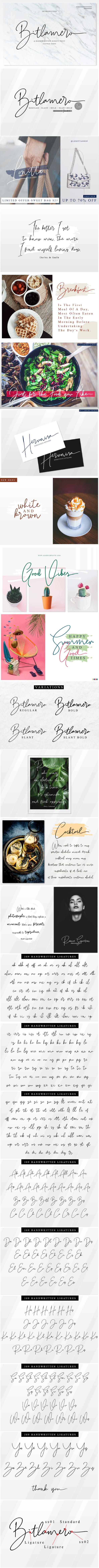 4 Style Font - Bitlamero Script - Calligraphy Script