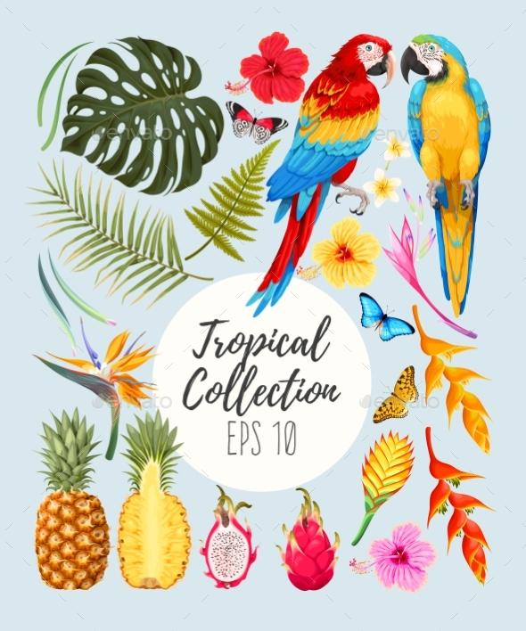 Tropical Vector Set - Flowers & Plants Nature