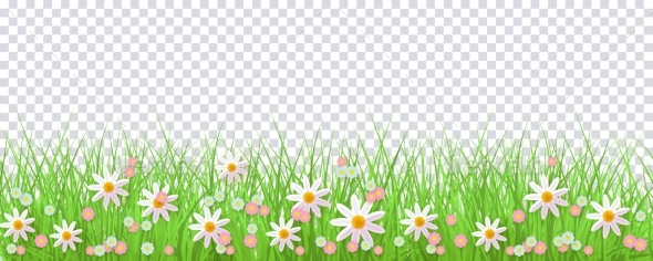 Spring Border with Green Grass and Flowers - Flowers & Plants Nature