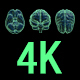 3 Human Brain Clips in 4K - VideoHive Item for Sale