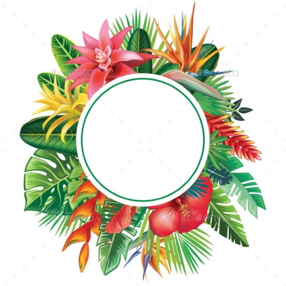 Round Frame From Tropical Plants and Flowers - Flowers & Plants Nature