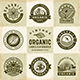 Vintage Organic Labels and Badges Set - GraphicRiver Item for Sale