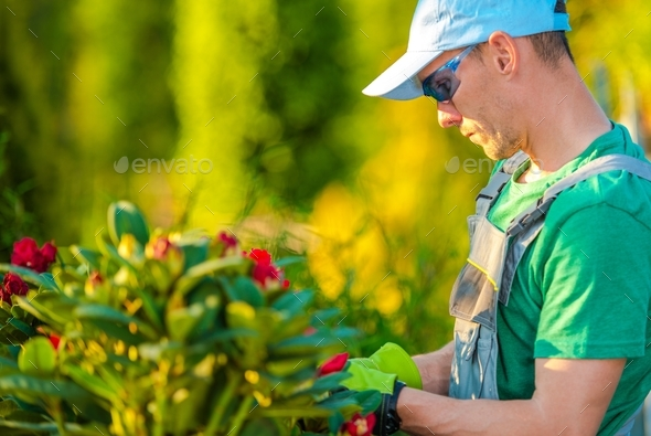 Spring Garden Maintenance - Stock Photo - Images