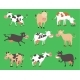 Milk Vector Cow Bull with Calf Buffalo Different
