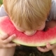 A Little Boy Eats Watermelon in the Park in Summer - VideoHive Item for Sale