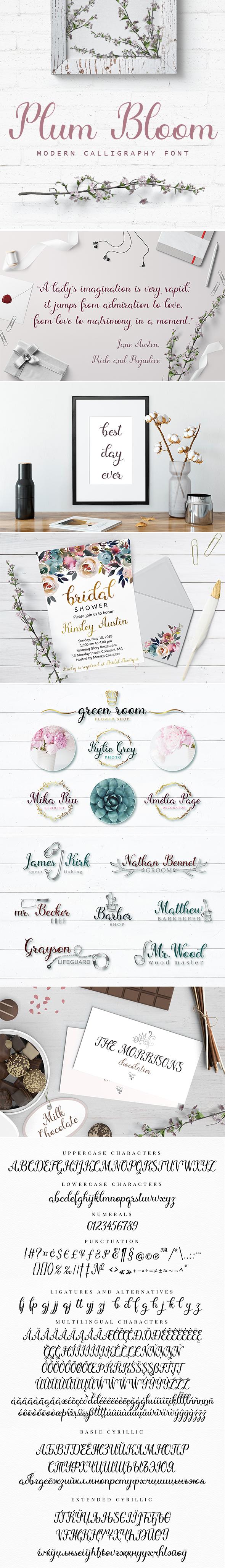 Plum Bloom - Font - Calligraphy Script