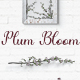 Plum Bloom - Font - GraphicRiver Item for Sale