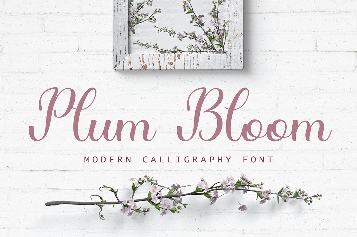 Plum Bloom - Font