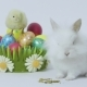 Easter Bunny and Chick with Colored Eggs on White Background - VideoHive Item for Sale