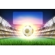 Vector Realistic Footbal Soccer Stadium Background - GraphicRiver Item for Sale