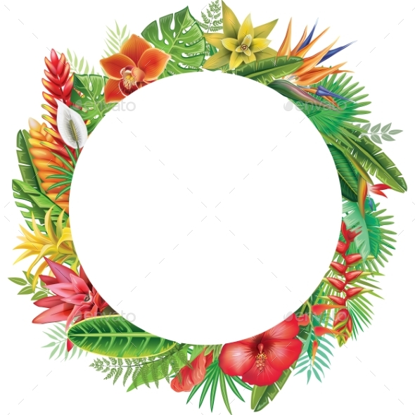 Round Frame From Tropical Plants - Flowers & Plants Nature