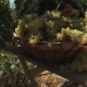 Wooden Basket with Grapes on Table at Vinery Yard - VideoHive Item for Sale